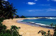 Honeymoon Travel in Srilanka