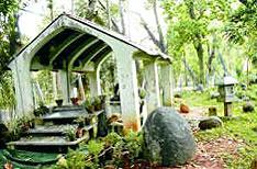 Botanical Garden Pondicherry Tour Guide Tamil Nadu
