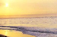Chandipur on Sea Bhubaneswar Beach Holidays Orissa India