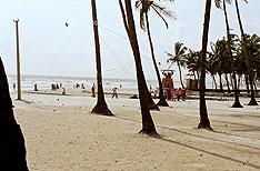 Colva Beach Goa Tour Packages India
