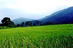 Coorg Travel Vacations Karnataka India