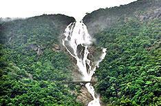 Dudhsagar Waterfalls Goa Travels and Tours India