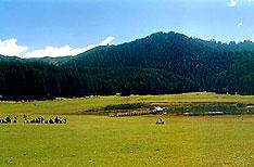 Khajjiar Tour Packages Himachal Pradesh India