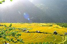 Honeymoon Tours Kullu Himachal Pradesh