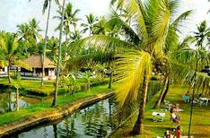Kumarakom Travel Kerala