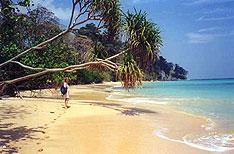 Neil Island Andaman and Nicobar Holiday Vacations