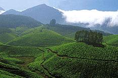 Palakkad Tours Kerala Hill Stations India
