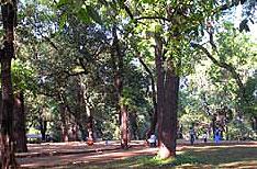 Rye Wood Park Lonavala Travels Maharashtra