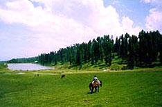Sanasar Patnitop HolidaysJammu and Kashmir