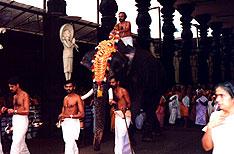 Sree Krishna Temple Tour Kerala India